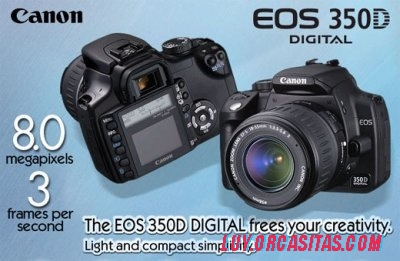 canon-350d-f01-73115.jpg